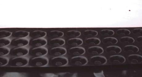 TERRAPLAST PLUS S20P