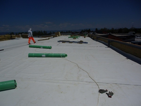 flat roof facts